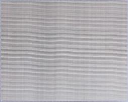 60目不锈钢网